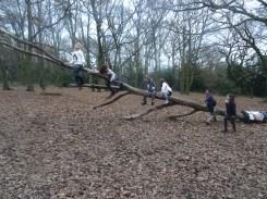 last-free-forest-school-activity-for-primary-school-children-on-streatham-common-lambeth-35