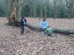 last-free-forest-school-activity-for-primary-school-children-on-streatham-common-lambeth-4