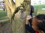 Granton Primary School forest school after school activity Lambeth-8