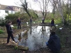 Granton Primary Year 5 students pond dipping Lambeth-3