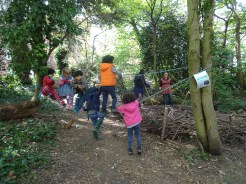 Free family nature activity Knights Hill Wood Lambeth London-4