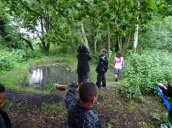 after school club pond dipping Lambeth London-3