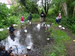 after school club pond dipping Lambeth London-8