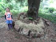 free family nature activity Knight Hill Wood Lambeth London-11