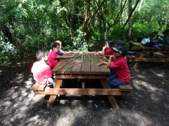 Free After School Forest School Granton Primary Lambeth London-4