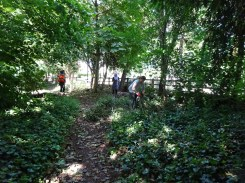 Free Family Forest School Knights Hill Wood Lambeth London-8