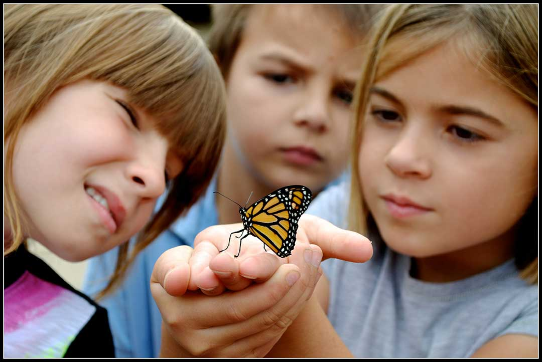 40-Monarch-with-cute-kids