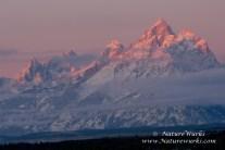 Sunrise Grand Teton NPS