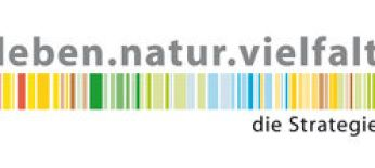 csm_Logo_NBS_UZ_die_Strategie_RGB_06_1e4bb4b9b2