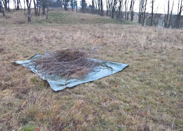 Mittels Planen werden angeschnittene Gehölze von der Fläche geschafft.