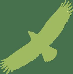 Eine Silhouette eines Greifvogels auf weißem Grund.