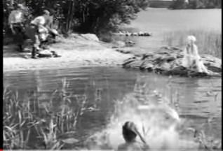 4-naturligt-finsk film