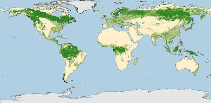 Estensione delle foreste nel mondo