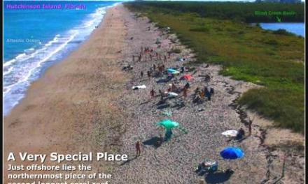 Home Page of the Treasure Coast Naturists – Friends of Blind Creek Beach