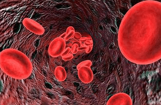 Redcells