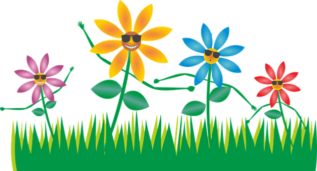 flowers-1592176__340