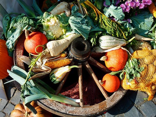 Légumes dde saison_coaching courses alimentaires