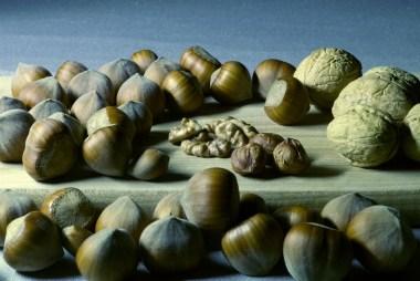 Fruits Oligéneux - Autour du Magnésium : Un Minéral Essentiel