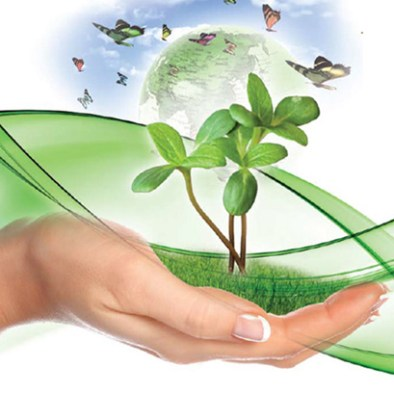Naturopath Solutions – Natural Solutions to Good Health and