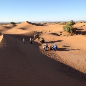Marokko2016-LagerplatzInderWueste