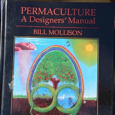 bog-permaculture-1-450