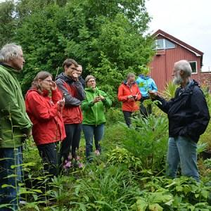 Efterårsferie med friluftssjov og læring @ Naturplanteskolen | Hedehusene | Danmark