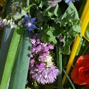 Workshop om flerårige grøntsager @ Naturplanteskolen | Hedehusene | Danmark