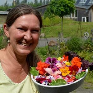 Workshop: Pluk og smag en Fantasilat @ Naturplanteskolen | Hedehusene | Danmark