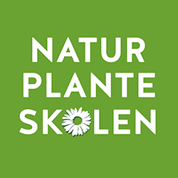 naturplanteskolen