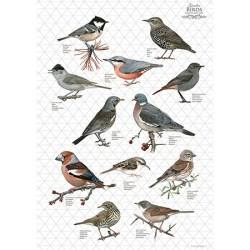 Viskestykke med havens grå fugle fra Koustrup - Køb på Naturplanteskolen