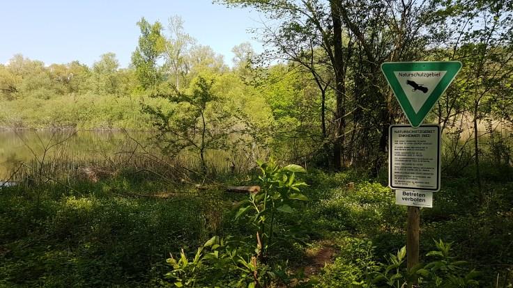 Das Naturschutzgebiet Enkheimer Ried besteht aus vielen unterschiedlichen Biotopen und bietet daher auch vielen seltenen Pflanzenarten ideale Lebensräume.