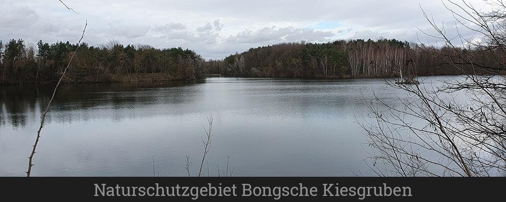 Naturschutzgebiet Bongsche Kiesgruben (1)