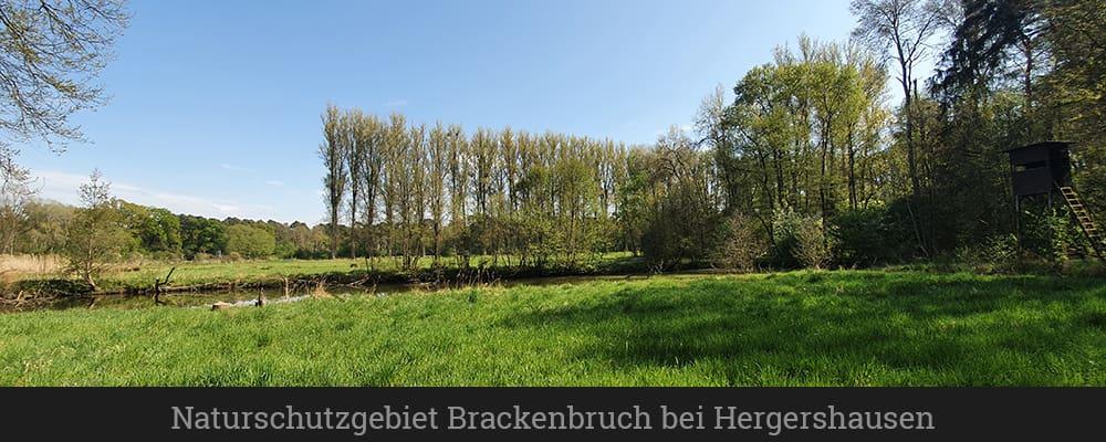 Naturschutzgebiet Brackenbruch bei Hergershausen