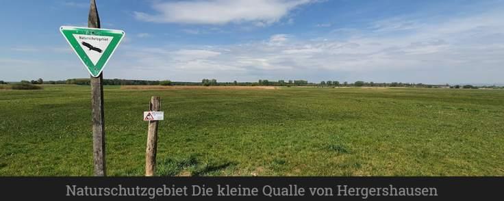 Naturschutzgebiet Die kleine Qualle von Hergershausen