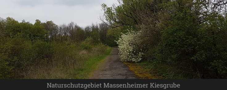 Naturschutzgebiet Massenheimer Kiesgrube
