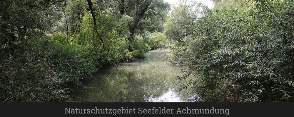 Naturschutzgebiet Seefelder Achmündung