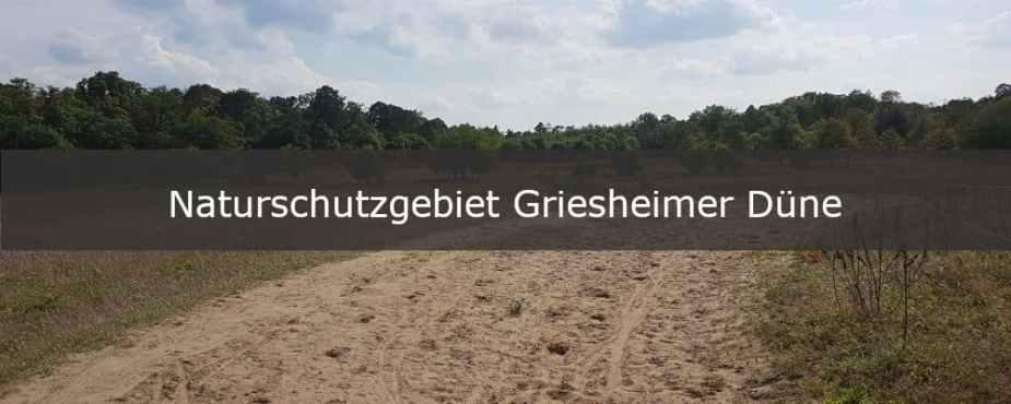 nsg naturschutzgebiet griesheimer duene darmstadt