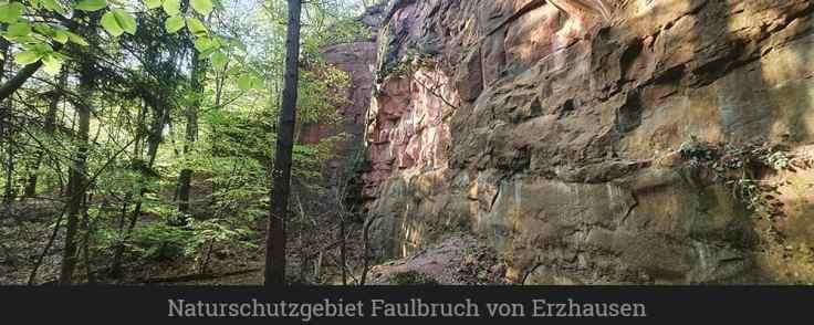 Naturschutzgebiet Sandsteinbrüche am Burzelberg bei Frau Nauses (1)