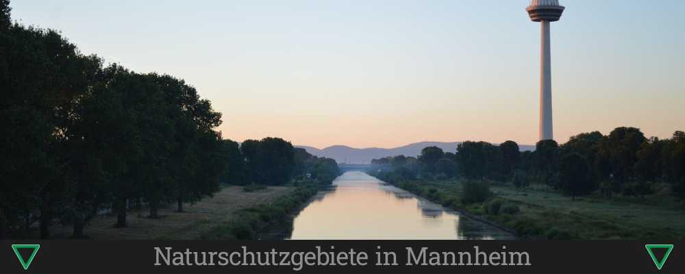 Naturschutzgebiete in Mannheim