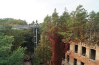 Alpenhaus Baumkronenpfad