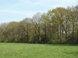 landgoed huize almelo (9)