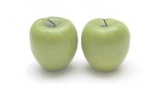 appeltjes - kopie