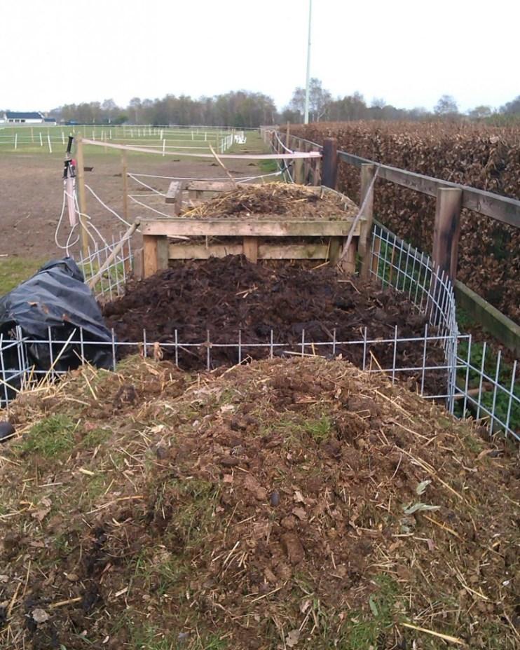 composthoop van paardenmest