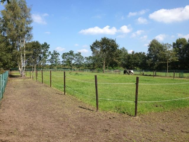 paddock paradise bless bieke