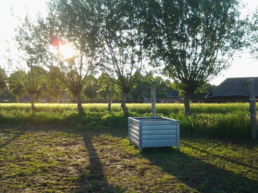 voerplaats in paddock paradise