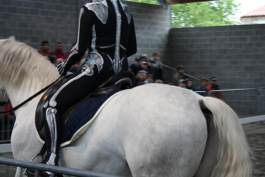 Blokken bouwen the visible rider
