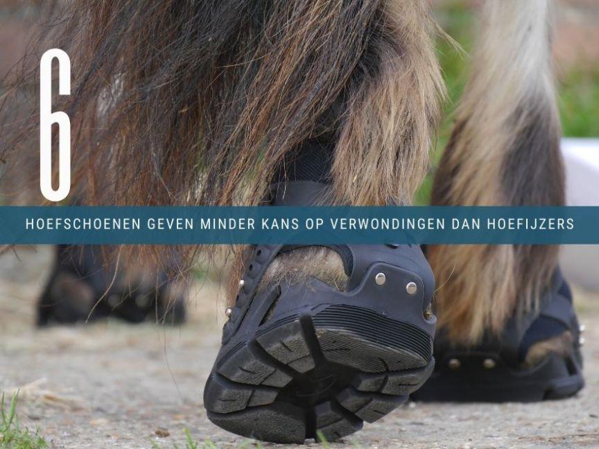 verwondingen hoefijzers vs hoefschoenen