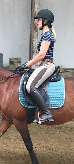 gronden of aarden in Centered Riding
