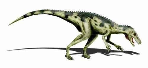 metode datiranja fosila dinosaura speed dating sherwood park