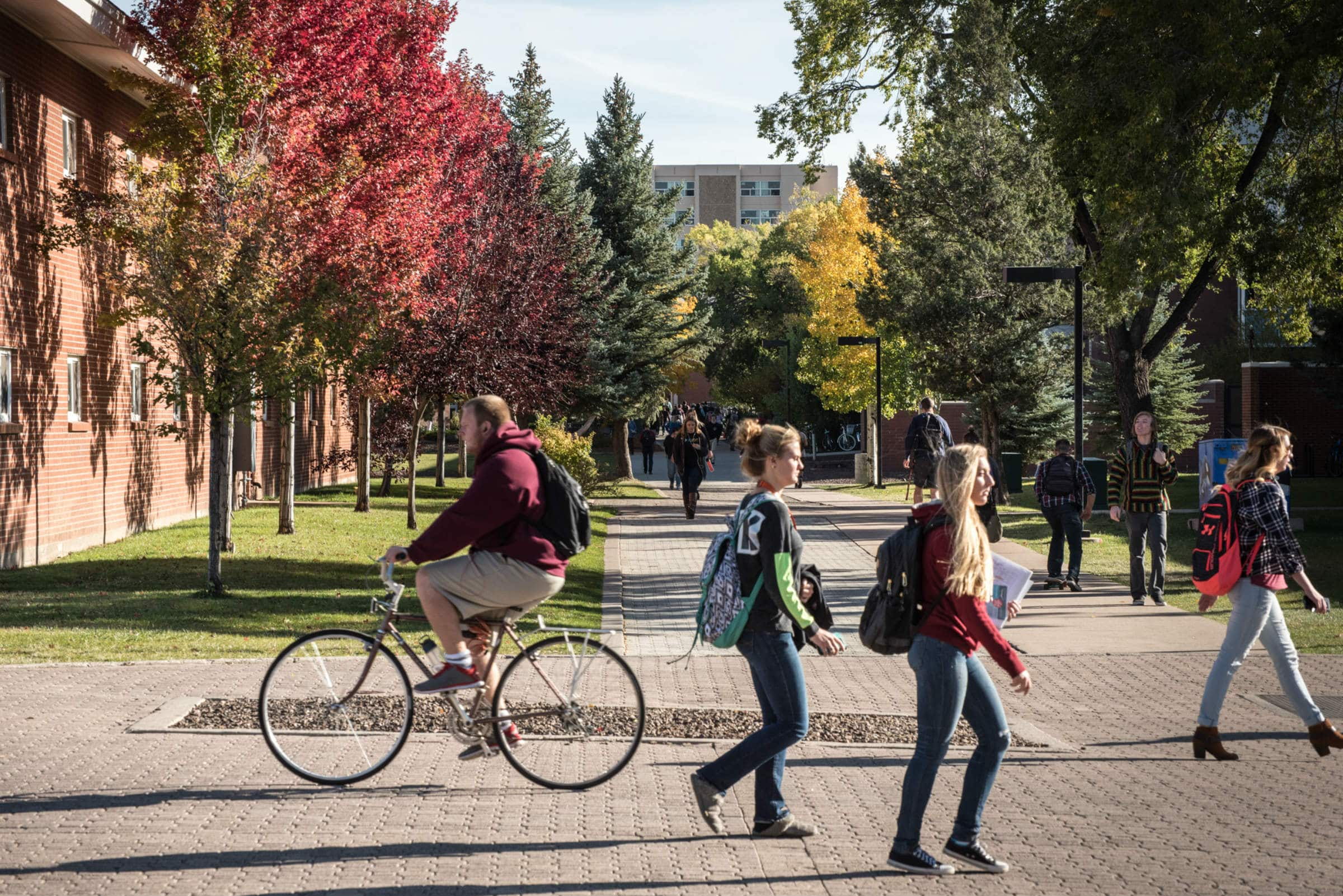 Flagstaff campus  Northern Arizona University